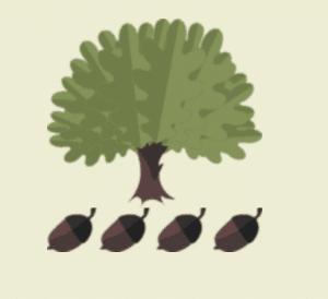 Oak Grove Academy tree